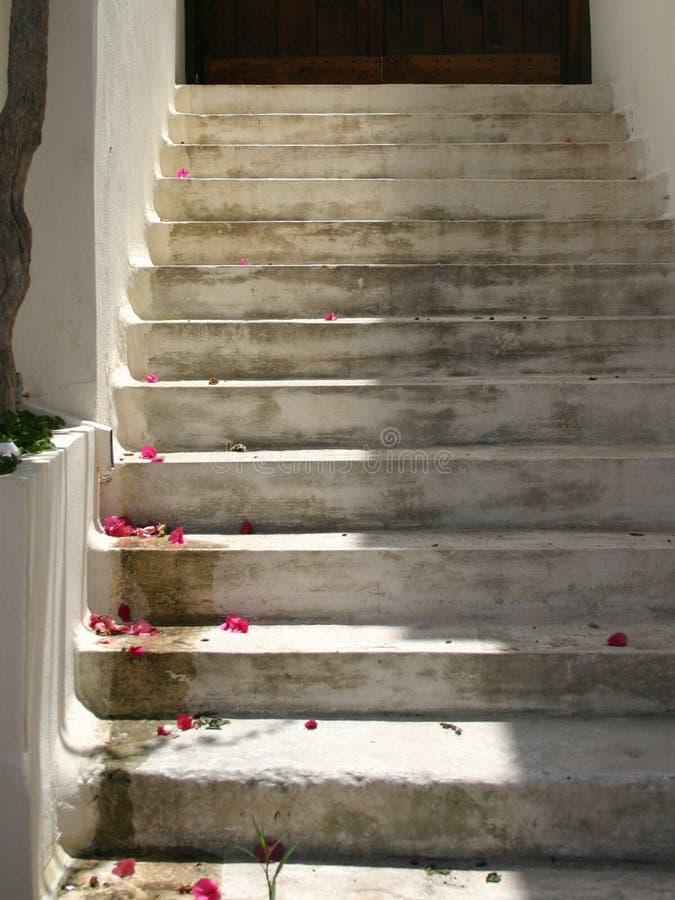 Witte treden die met zonneschijn en rode bloemblaadjes leiden stock afbeelding