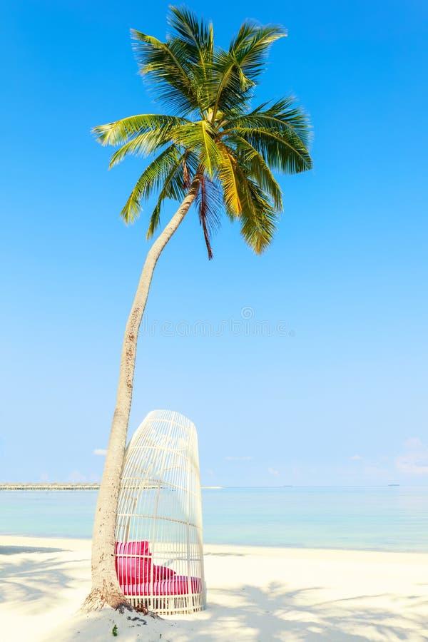 Witte tropische stoel onder palmen op perfect tropisch strand, royalty-vrije stock foto