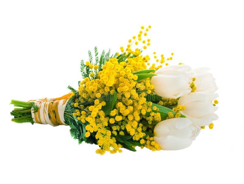 Witte tulpen met een mimosa stock foto