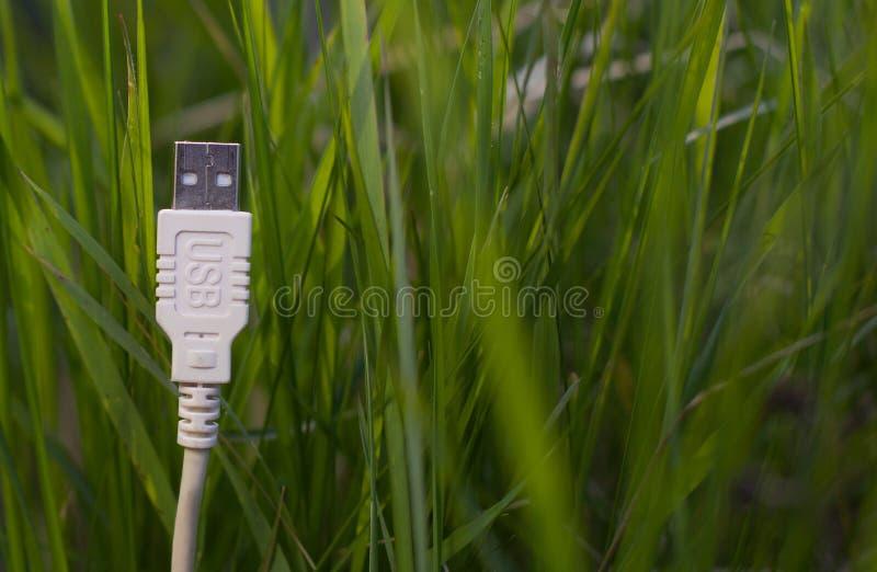 Witte USB-kabel op gras - groene technologie stock foto