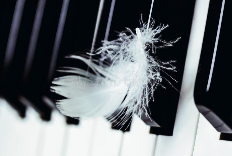 Witte veer op de achtergrond van het pianotoetsenbord royalty-vrije stock foto