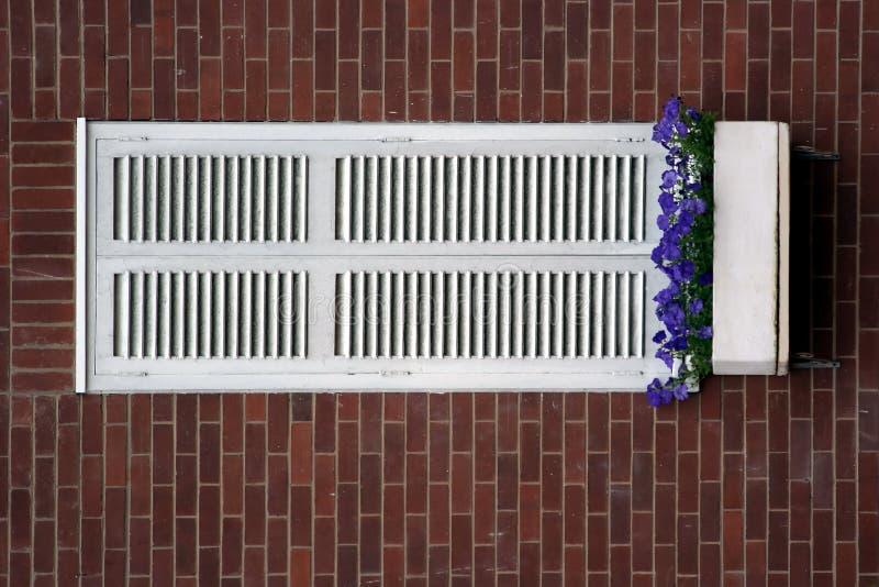 Witte vensterblinden royalty-vrije stock afbeeldingen