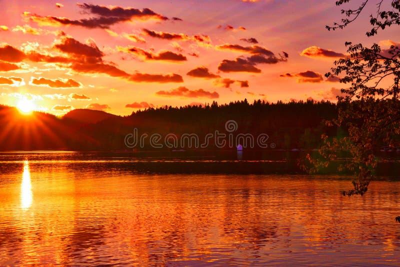 Witte vismeer, Montana stock foto