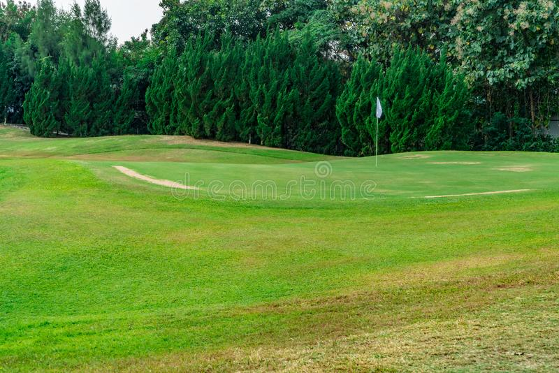 Witte vlag met groen gras stock foto