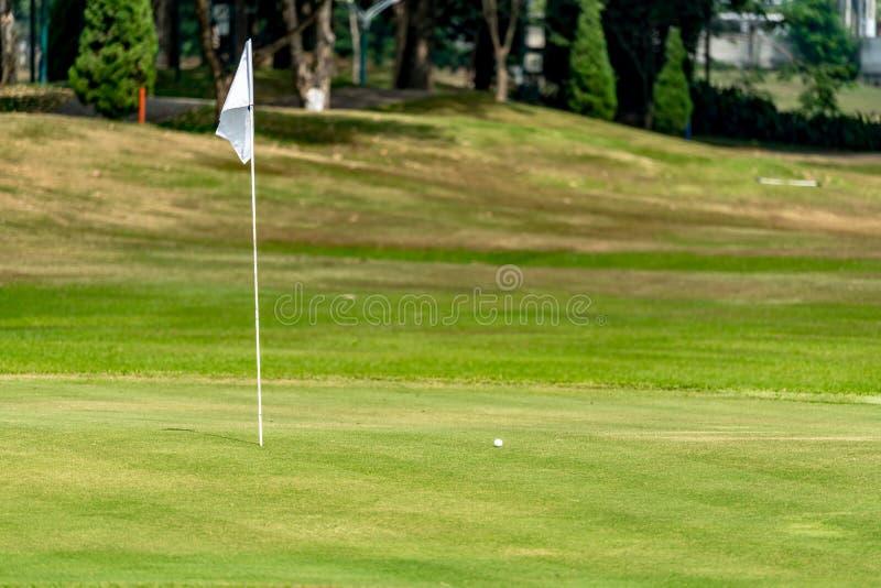Witte vlag met groen gras royalty-vrije stock foto's