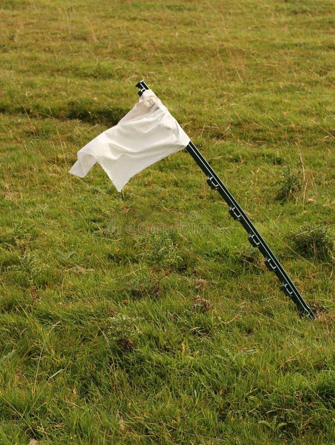 Witte vlag op groene achtergrond stock afbeeldingen