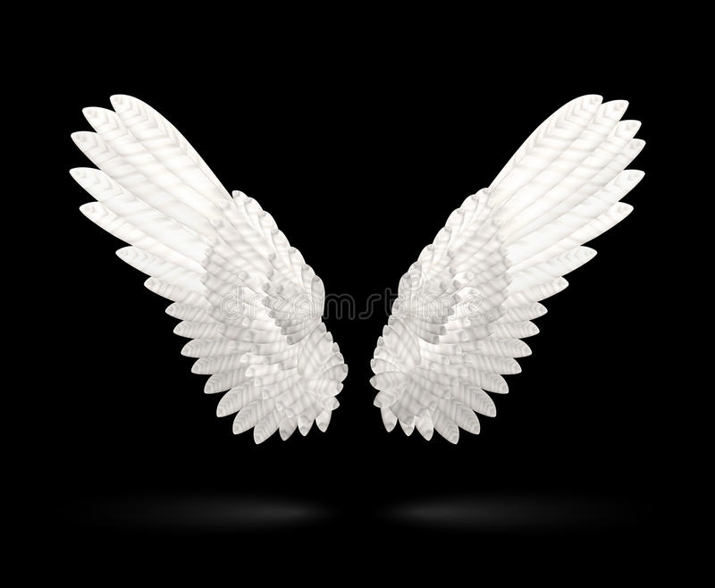 Witte Vleugels vector illustratie