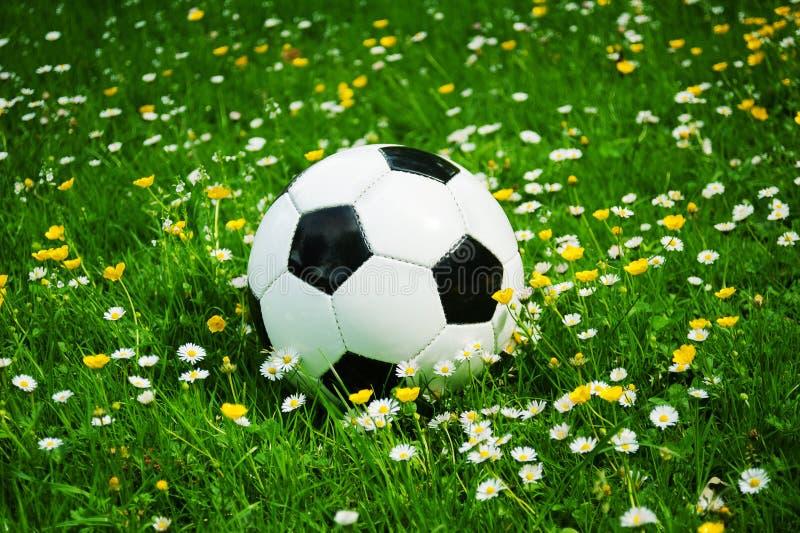 Witte voetbal de bal en de zwarte liggen in het gras tussen bloemen in de zomer royalty-vrije stock foto