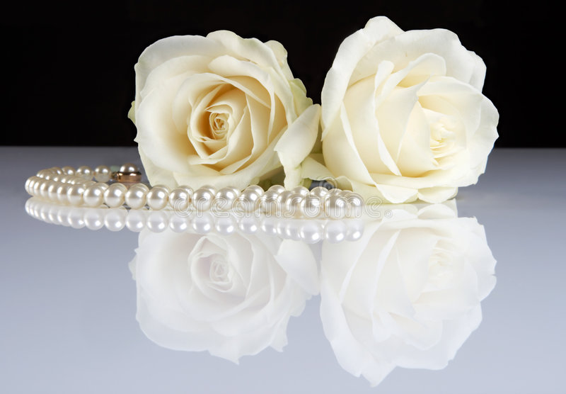 Witte weerspiegelde rozen stock afbeelding