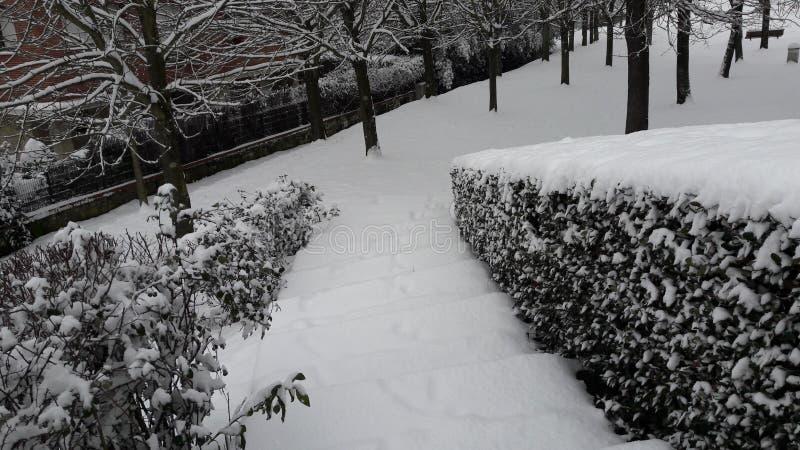 Witte weg stock foto's