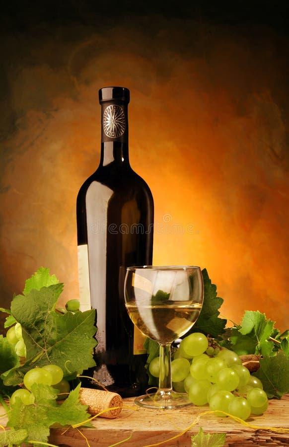 Witte wijn met verse druiven stock fotografie