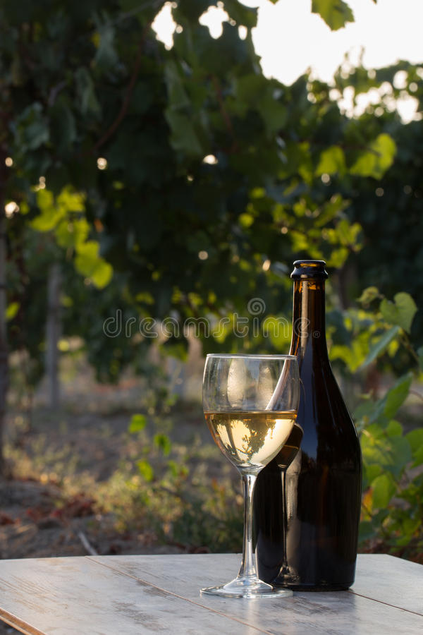 Witte wijnfles royalty-vrije stock foto's