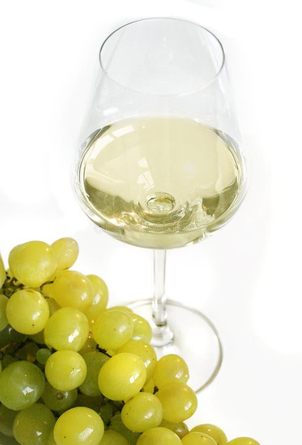 Witte wijnstok royalty-vrije stock fotografie