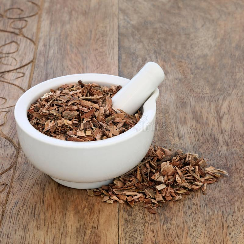 Witte Willow Bark Herb royalty-vrije stock afbeeldingen