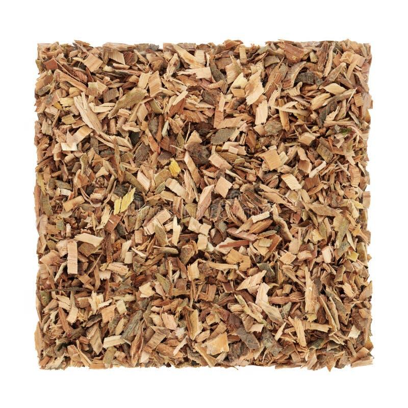 Witte Willow Bark Herb stock foto