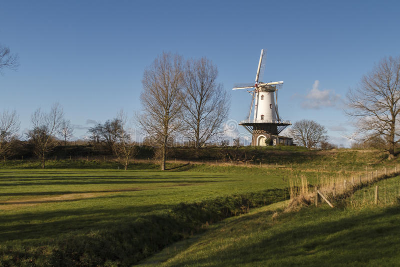 Witte windmolen in Veere royalty-vrije stock foto's