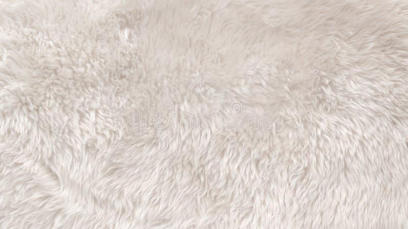 Witte wol textuurachtergrond, lichte natuurlijke dierlijke wol, witte naadloze katoen, textuur van zacht bont voor ontwerpers, cl stock fotografie