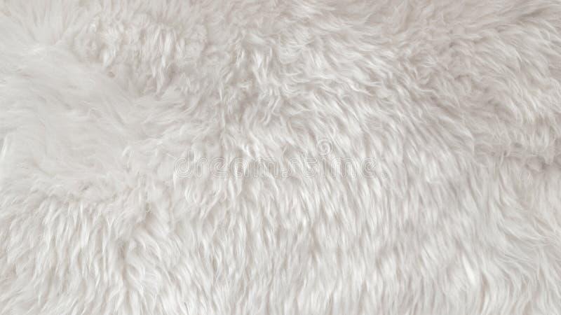 Witte wol textuurachtergrond, lichte natuurlijke dierlijke wol, witte naadloze katoen, textuur van zacht bont voor ontwerpers, cl stock foto