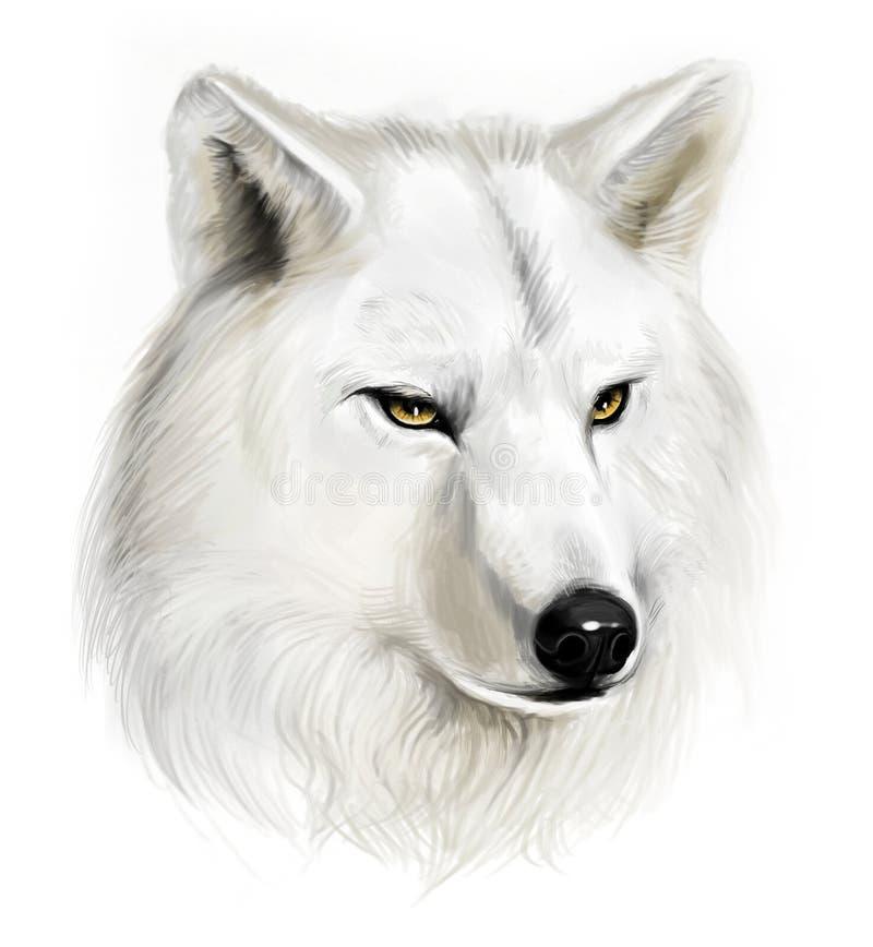Witte Wolf stock illustratie