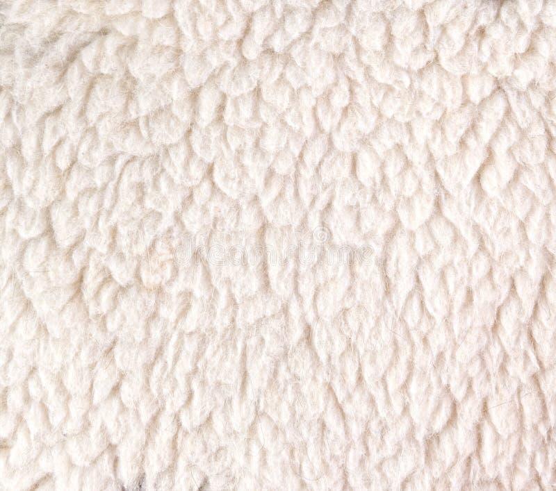 Witte Wollige Schapenvacht Voor Achtergrond Stock