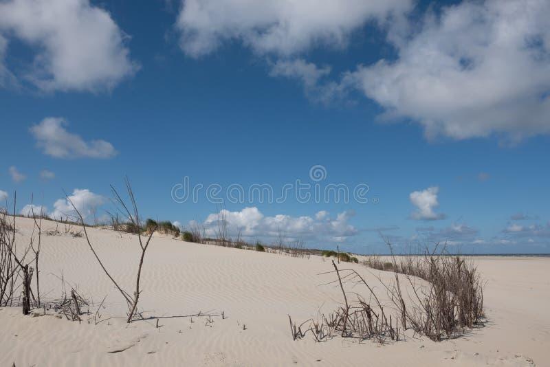 Witte zandduinen op Norderney royalty-vrije stock afbeelding