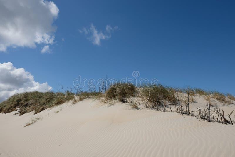 Witte zandduinen op Norderney stock foto