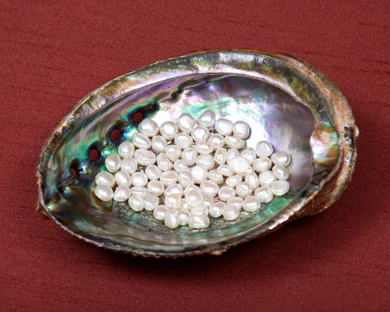 Witte zoetwaterparels in regenboogabalone shell stock fotografie