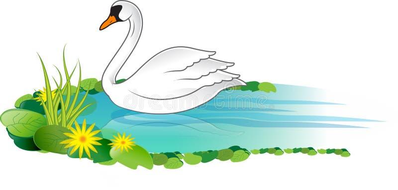 Witte zwaan vector illustratie