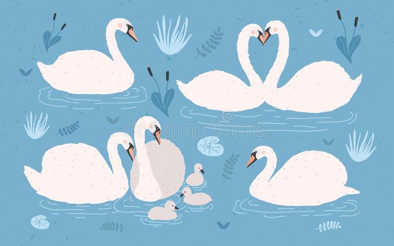 Witte zwaaninzameling op blauwe achtergrond Kiest uit en zwaans paren met kuikens Hand getrokken kleurrijke vectorillustratie vector illustratie