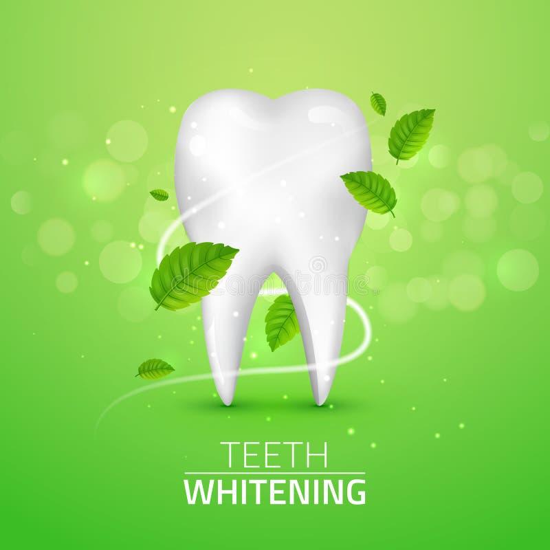 Wittend tandadvertenties, met muntbladeren op groene achtergrond De groene munt verlaat schoon vers concept Tandengezondheid royalty-vrije illustratie