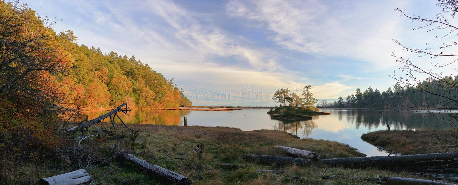 Beautiful Evening Light in Fall on Island and Still Waters of Witty`s Lagoon, Victoria, British Columbia stock photos