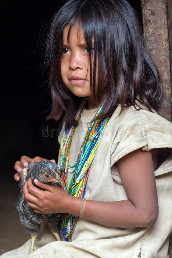 Wiwa Indian Girl. MAGDALENA, COLOMBIA - FEBRUARY 6: An indigenous Wiwa girl sits with her chicken in the Magdalena Department in Colombia on February 6, 2014 royalty free stock images