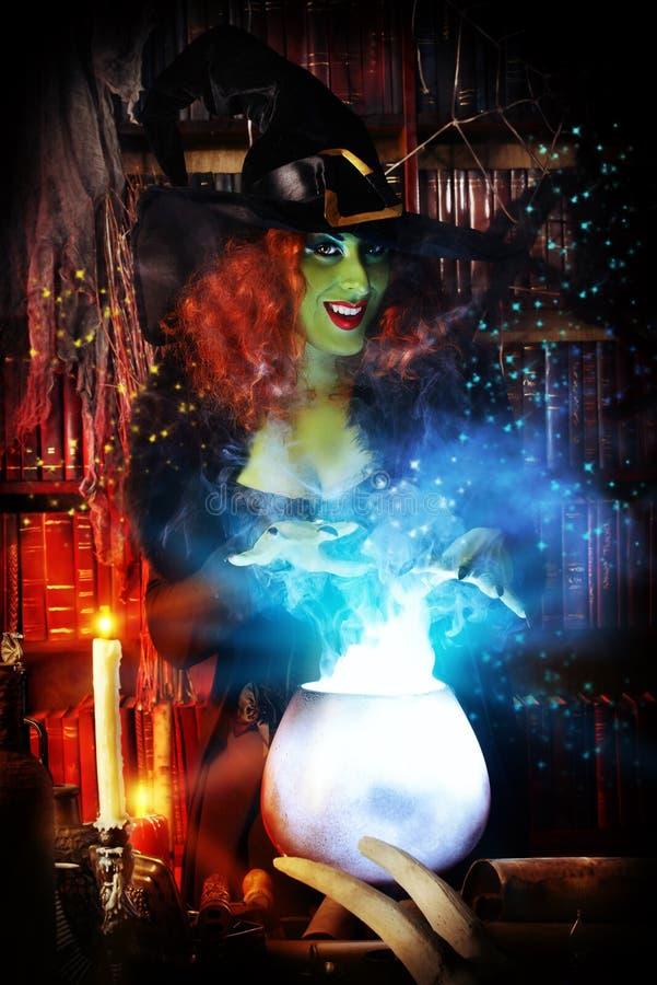 Wizarding lya arkivfoton