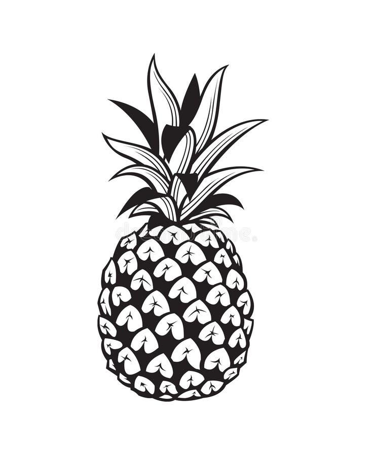 Wizerunek ananasowa owoc royalty ilustracja