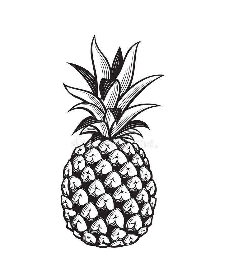 Wizerunek ananasowa owoc ilustracji