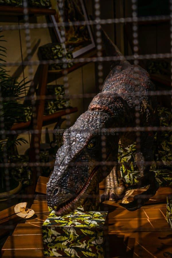 Wizerunek dinosaury zdjęcia royalty free