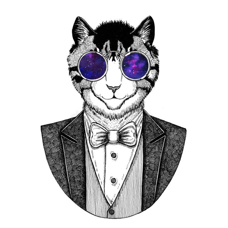 Wizerunek domowego kota modnisia zwierzęca ręka rysująca ilustracja dla tatuażu, emblemat, odznaka, logo, łata, koszulka royalty ilustracja