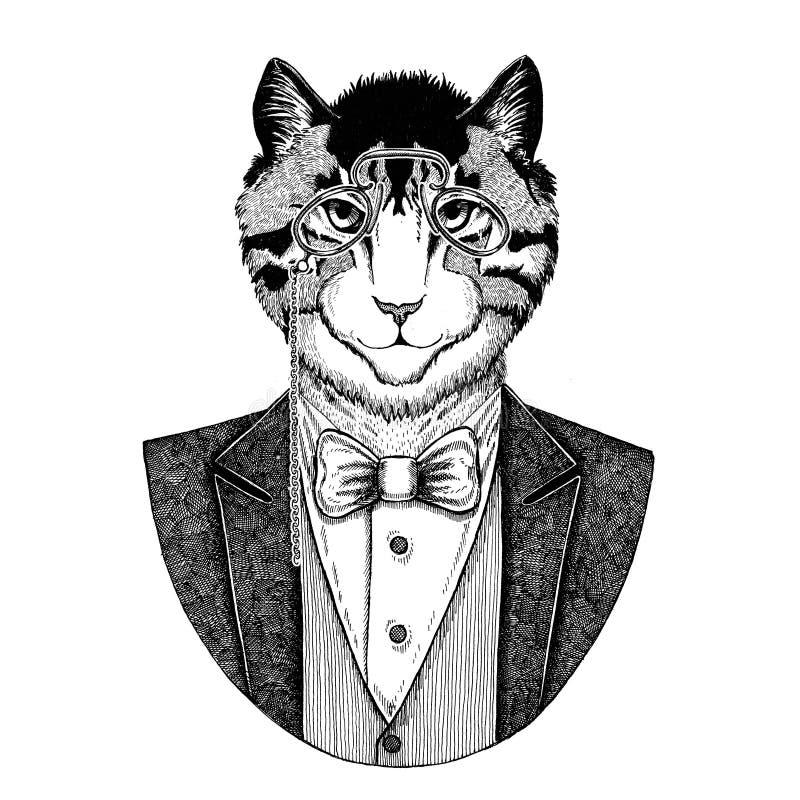 Wizerunek domowego kota modnisia zwierzęca ręka rysująca ilustracja dla tatuażu, emblemat, odznaka, logo, łata, koszulka ilustracja wektor