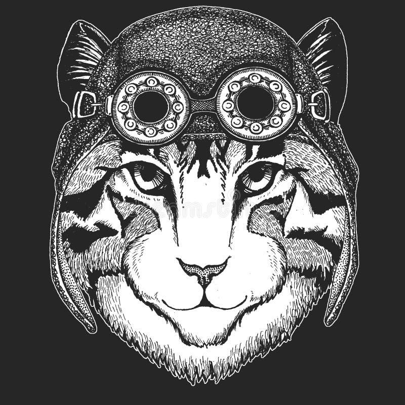 Wizerunek domowego kota ręka rysująca ilustracja dla tatuażu, emblemat, odznaka, logo, łata, koszulki Chłodno zwierzęcy być ubran ilustracja wektor