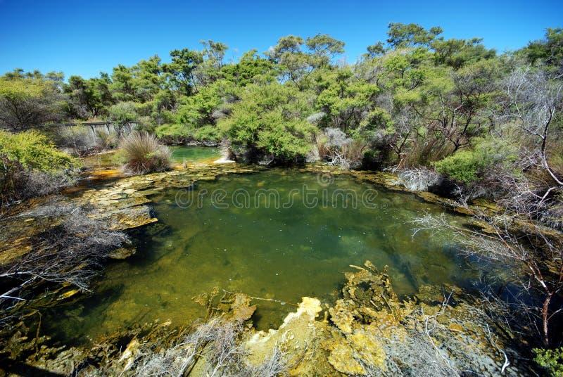 wizerunek geotermiczna wiosna zdjęcia stock