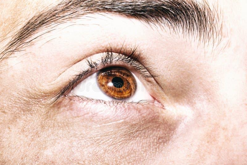 Wizerunek mężczyzna ` s brązu oka zakończenie up fotografia stock