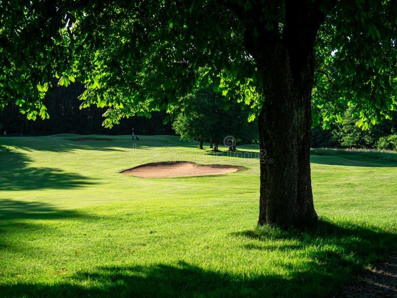Wizerunek pole golfowe z bunkierem i drzewami obraz royalty free