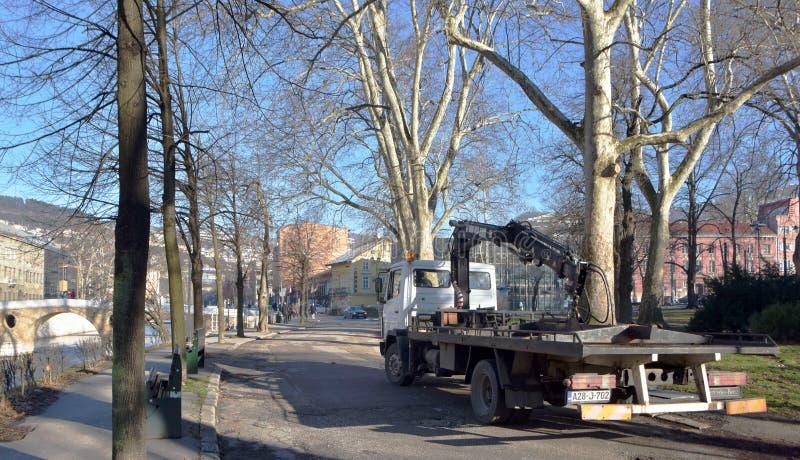 Wizerunek samochodowa holownicza ciężarówka parkująca na pustej drodze z widokiem park i budynki obrazy royalty free
