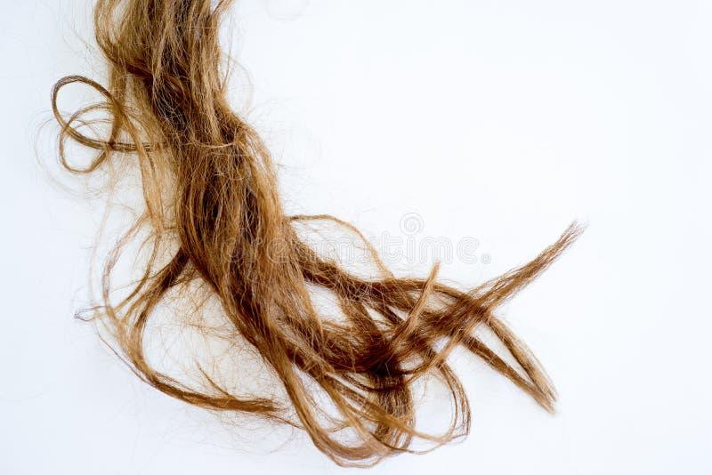 Wizerunek uszkadzający włosy zdjęcie royalty free