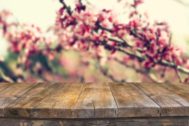 Wizerunek wiosen Czereśniowi okwitnięcia drzewni retro filtrujący wizerunek, selekcyjna ostrość obrazy stock