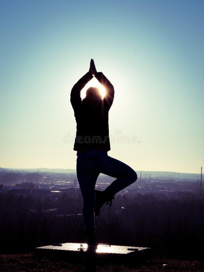 Wizerunek wykonuje joga drzewa na platformie z słońce promieniami kobiety sylwetka obraz stock