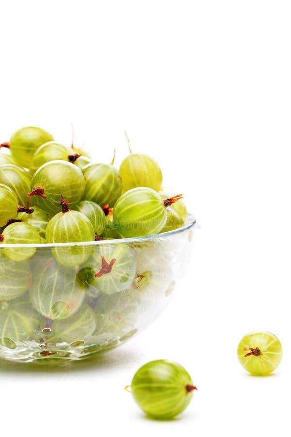Wizerunek zielony agrest w szklanej filiżance na pustym białym tle fotografia stock