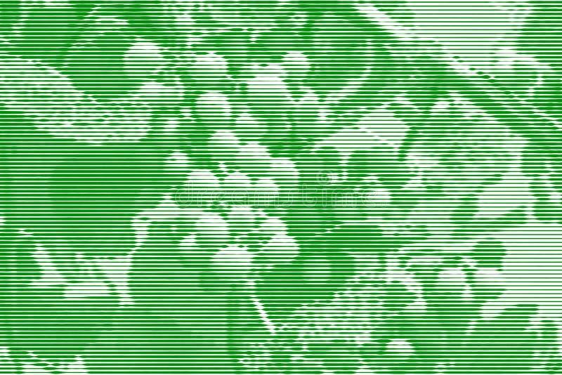 Wizerunku kolaż dojrzeń winogrona na winogradzie od horyzontalnego Lin ilustracji