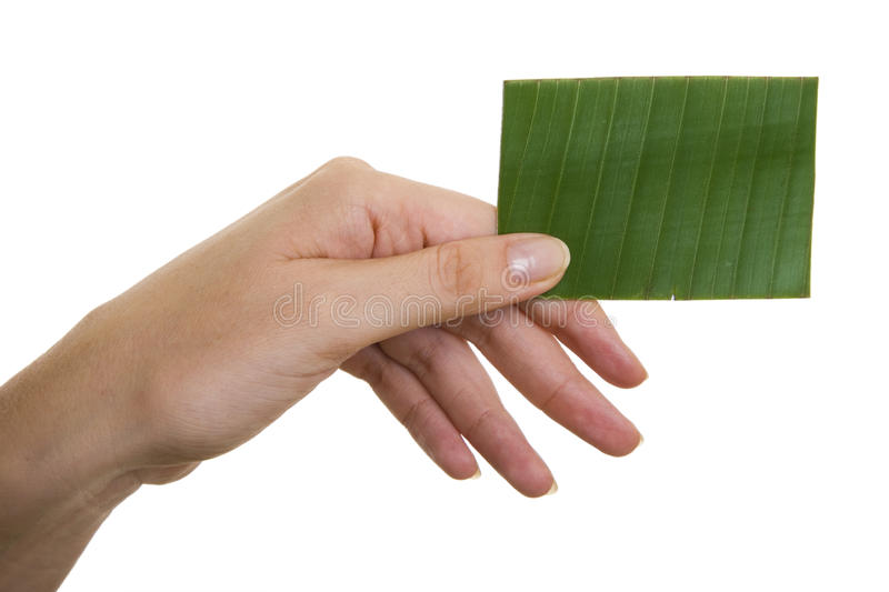wizytówki zieleń zdjęcia stock