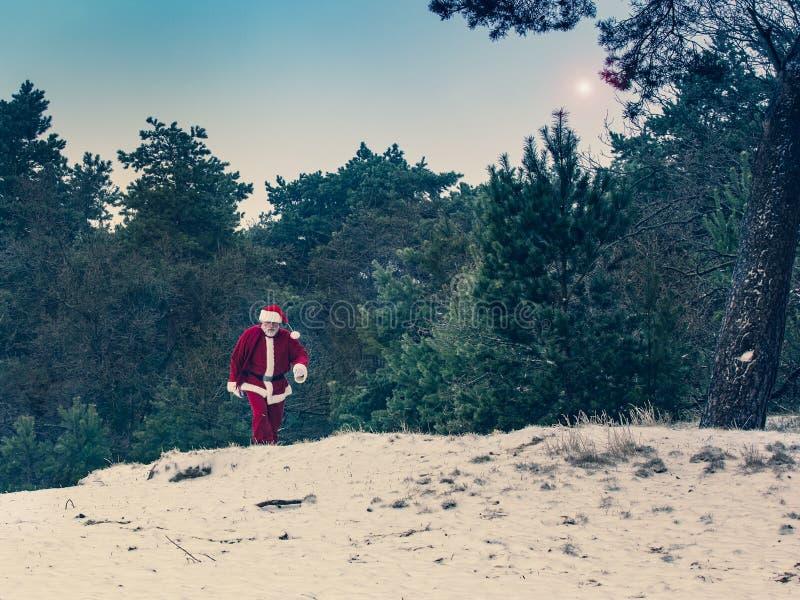 Wizyta Święty Mikołaj, zima las, Bożenarodzeniowy pojęcie obrazy stock